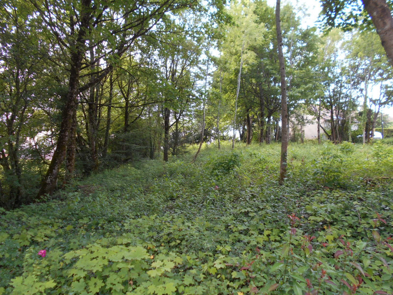 Vente terrain Lons-le-saunier 100 000€ - Photo 2