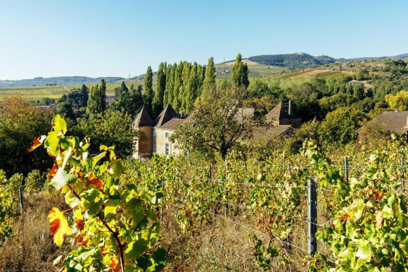Vente de prestige château Mâcon 1770000€ - Photo 3