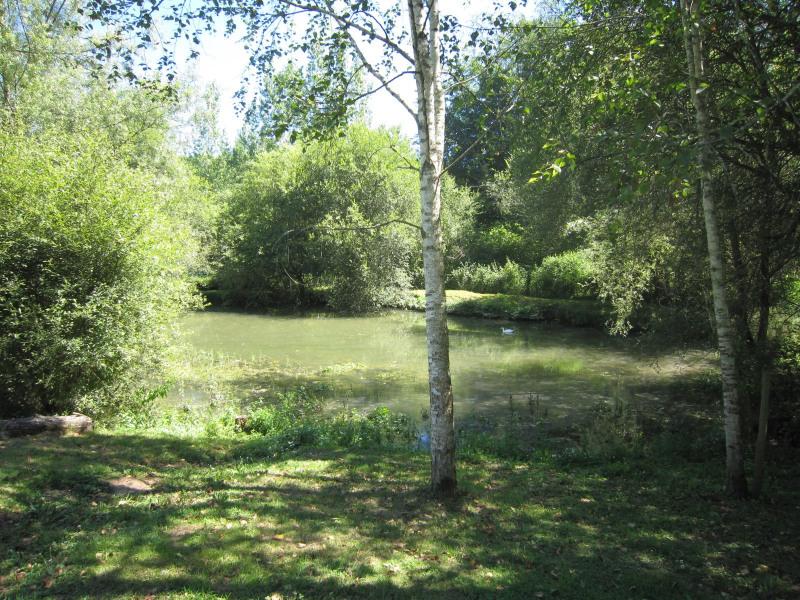 Vente maison / villa Siorac-en-perigord 275600€ - Photo 12