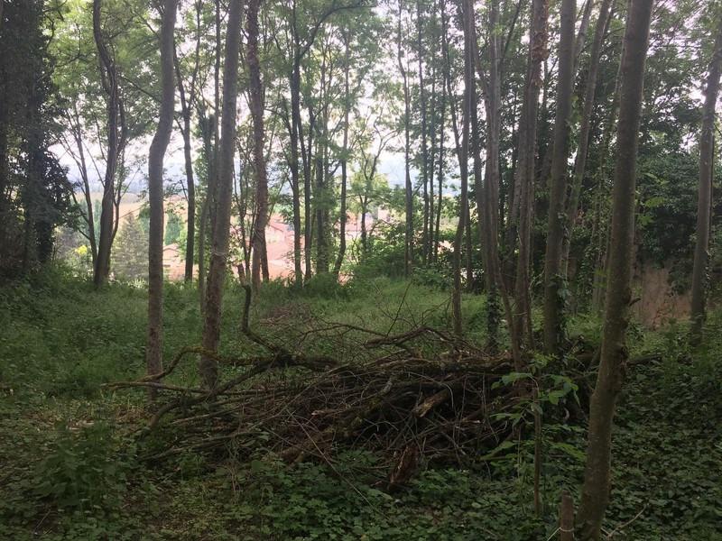 Vente terrain La baume-d'hostun 75000€ - Photo 9