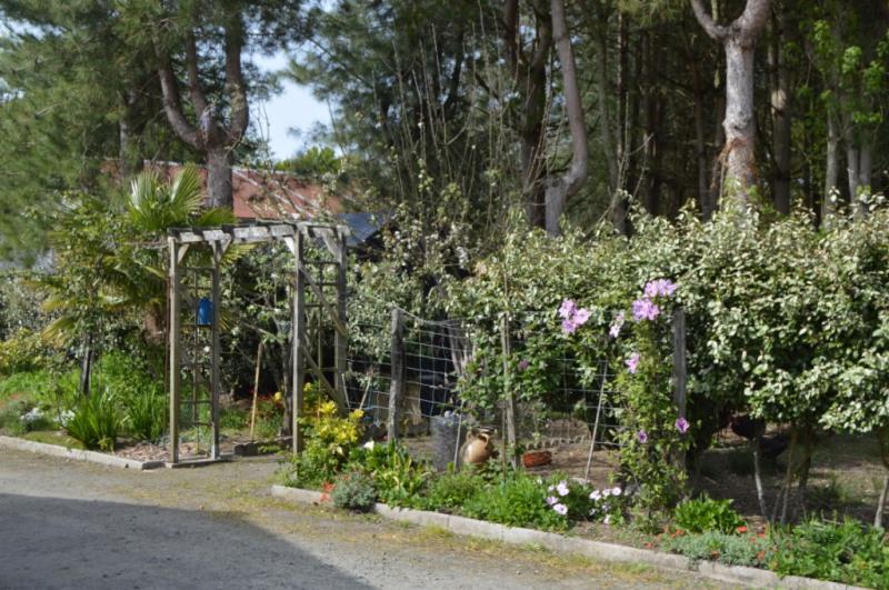 Vente maison / villa Bois de cene 241200€ - Photo 4