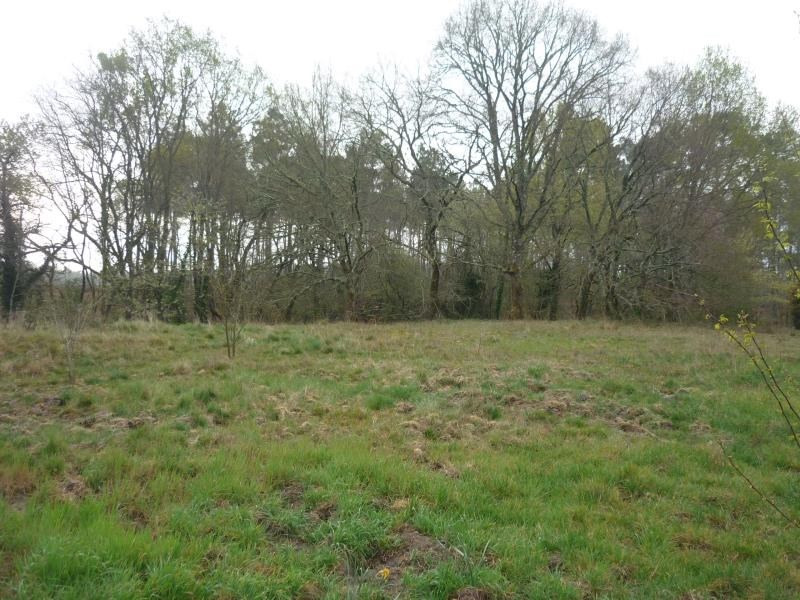 Vente terrain Belhade 49000€ - Photo 1