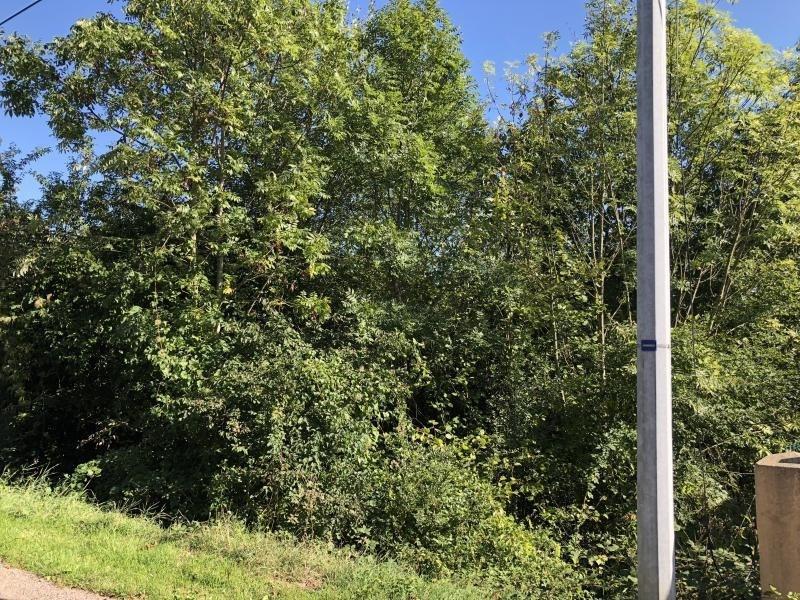 Venta  terreno Heiligenberg 27500€ - Fotografía 2