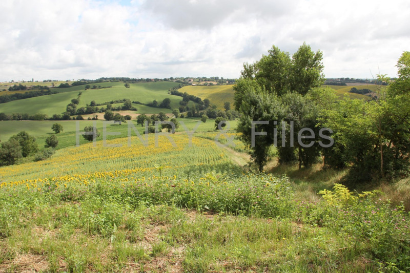 Sale site Rieumes 65 000€ - Picture 4
