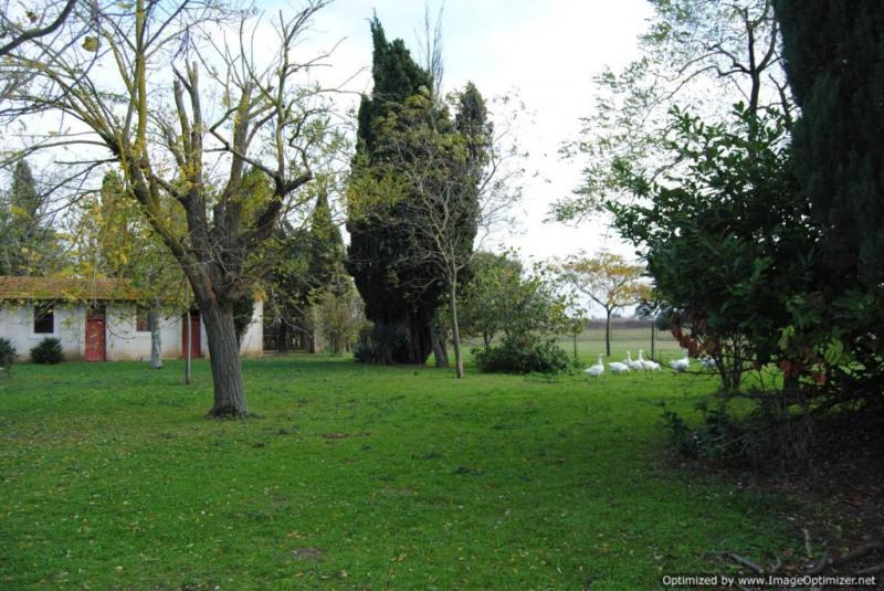 Vente de prestige maison / villa Castelnaudary 997000€ - Photo 5