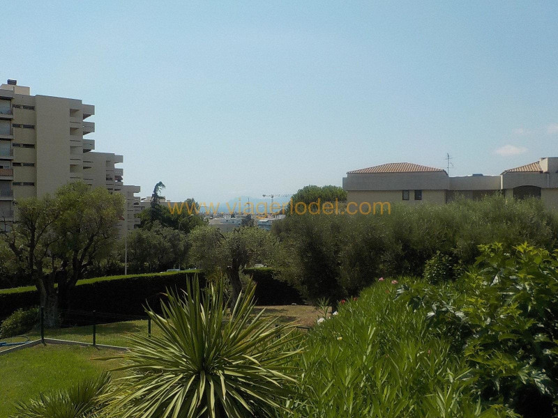 Life annuity apartment Antibes 65000€ - Picture 3
