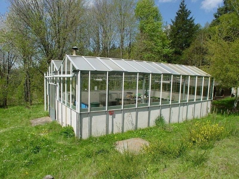 Sale house / villa Le chambon sur lignon 350000€ - Picture 3