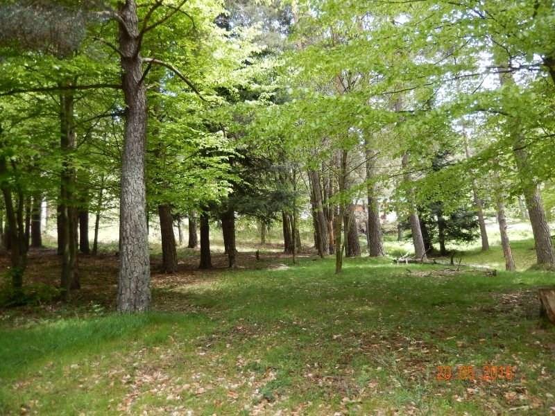 Vente terrain Le chambon sur lignon 32600€ - Photo 1