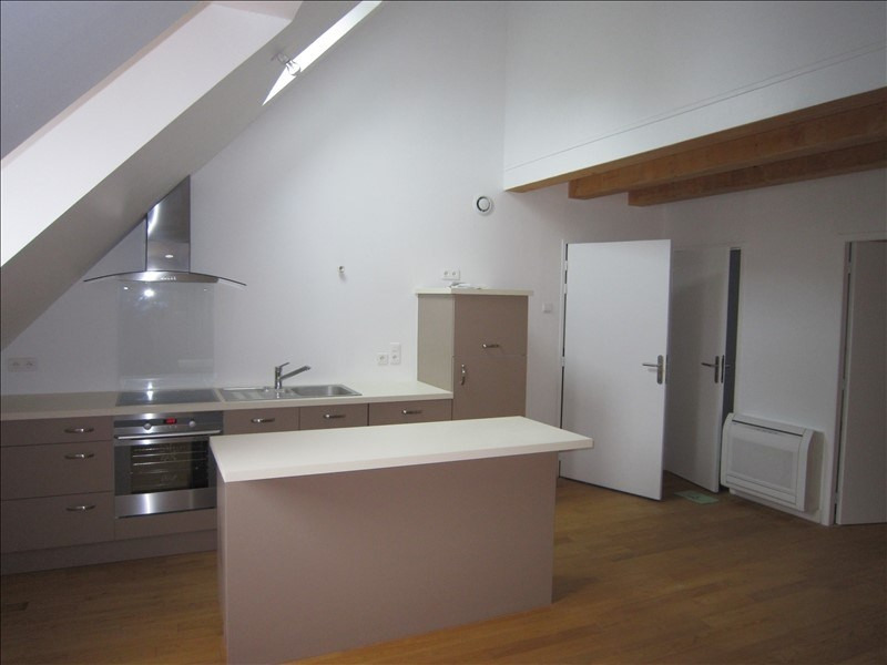 Rental apartment St cyprien 650€ CC - Picture 1