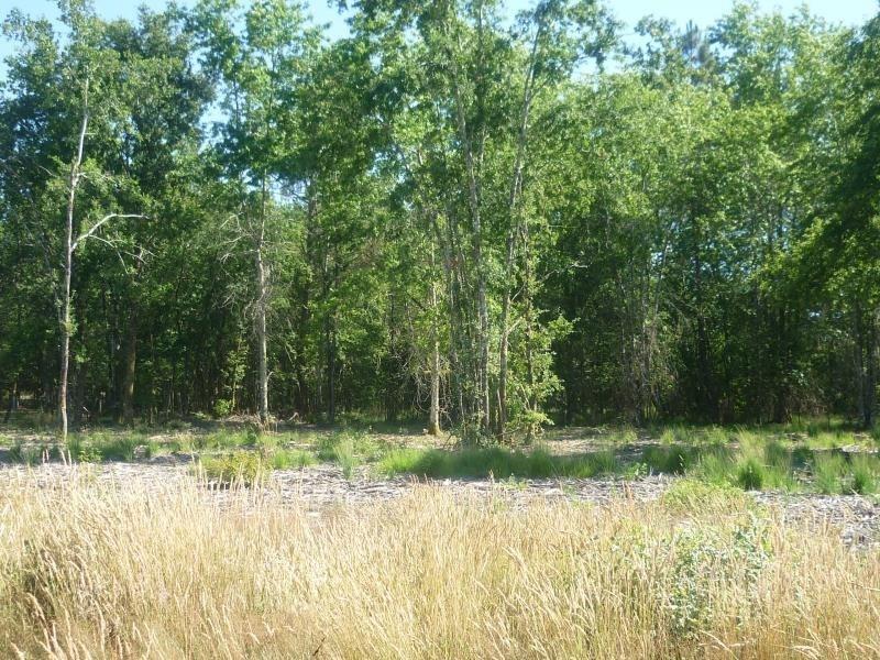 Vente terrain Saugnac et muret 85000€ - Photo 4