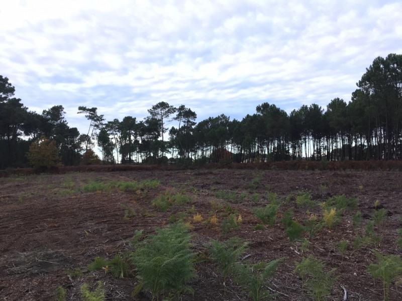 Vente terrain Dax 83000€ - Photo 2