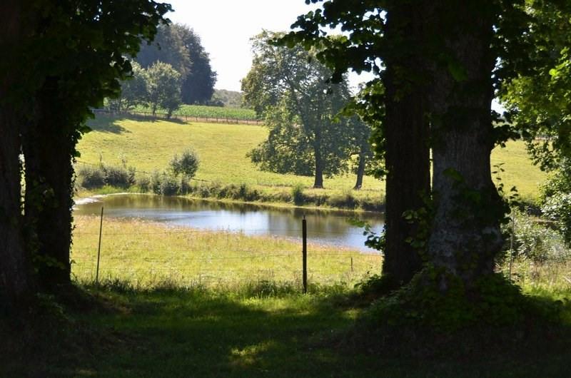 Immobile residenziali di prestigio castello Villedieu les poeles 1950000€ - Fotografia 7