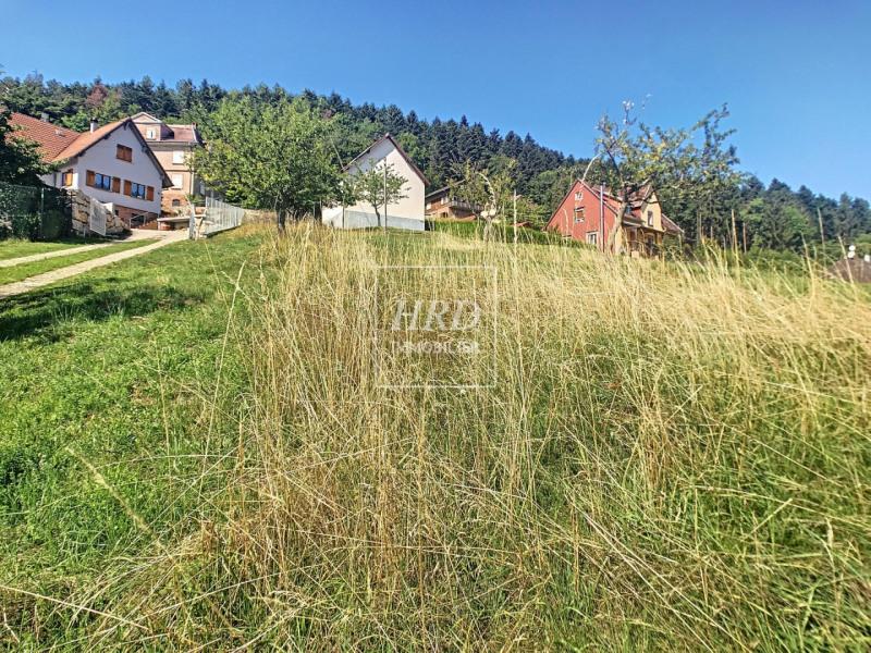 Venta  casa Wangenbourg 388500€ - Fotografía 7