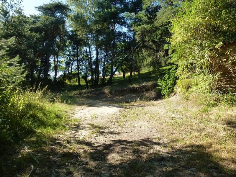 Vente terrain Hauterives 77400€ - Photo 2