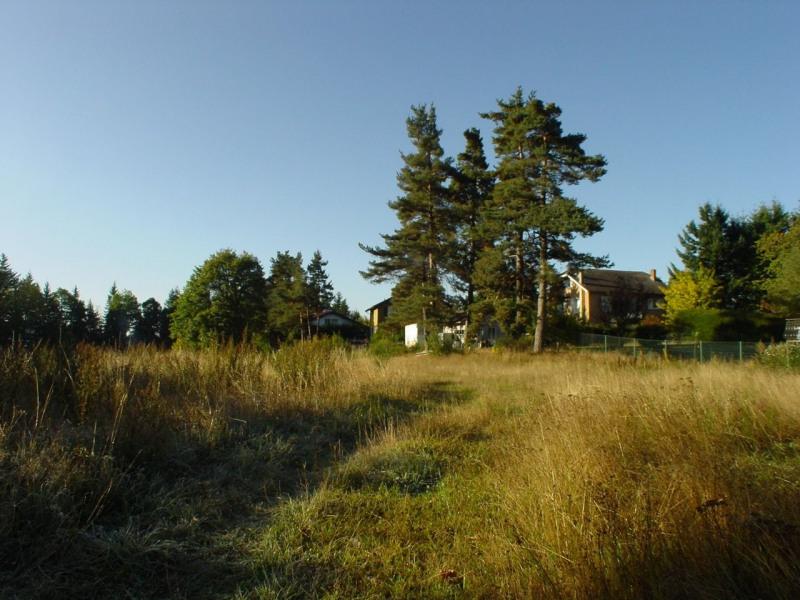 Vente terrain Le chambon sur lignon 50500€ - Photo 2