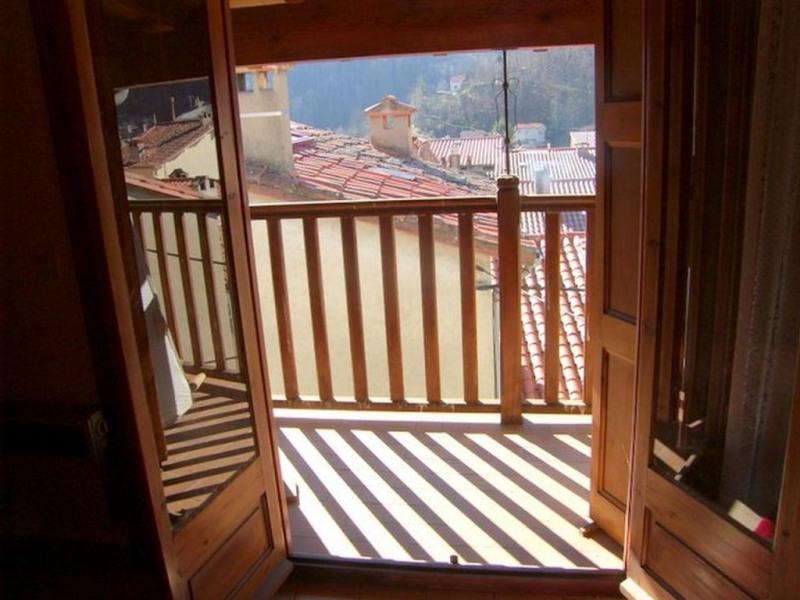 Location vacances maison / villa Prats de mollo la preste 560€ - Photo 17