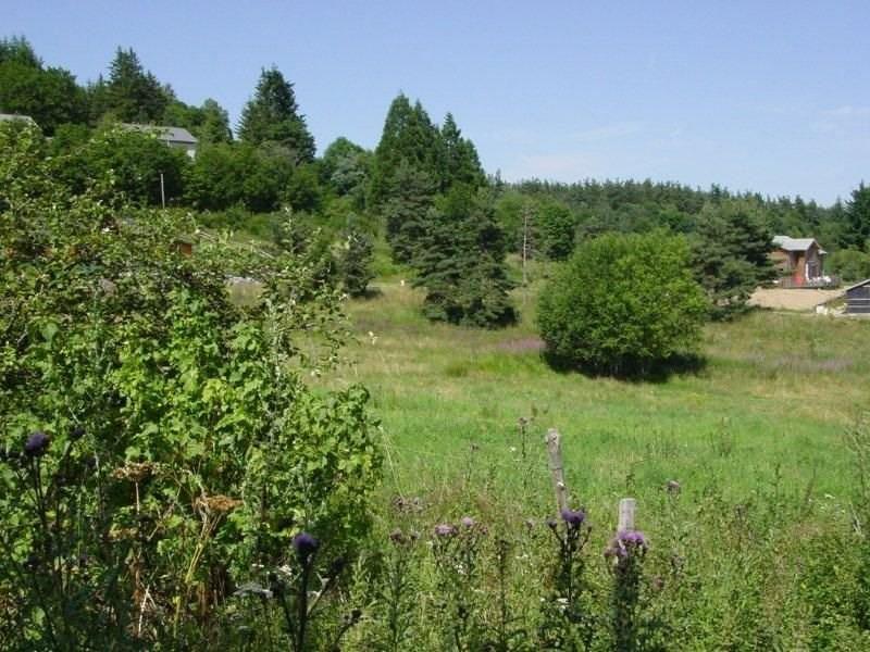 Vente terrain Le chambon sur lignon 33000€ - Photo 1