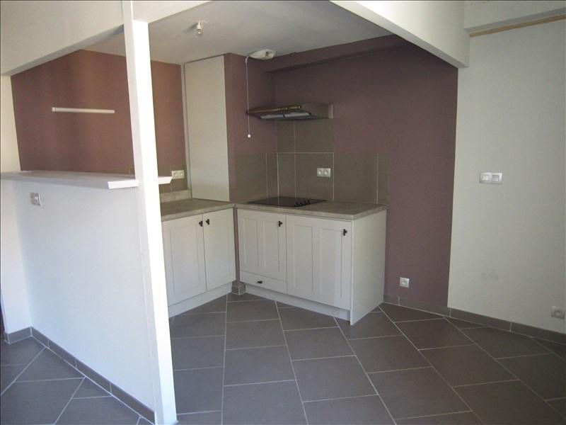 Location appartement St cyprien 500€ CC - Photo 2