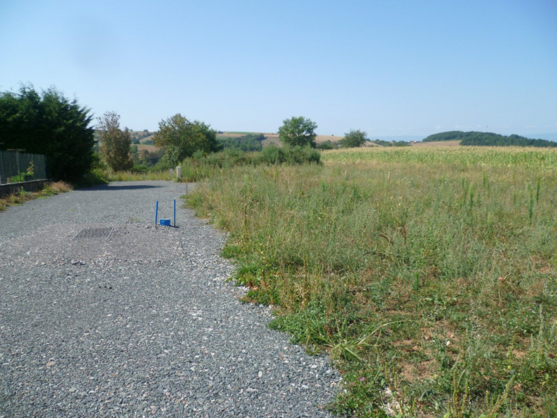 Vente terrain Virigneux 60000€ - Photo 3