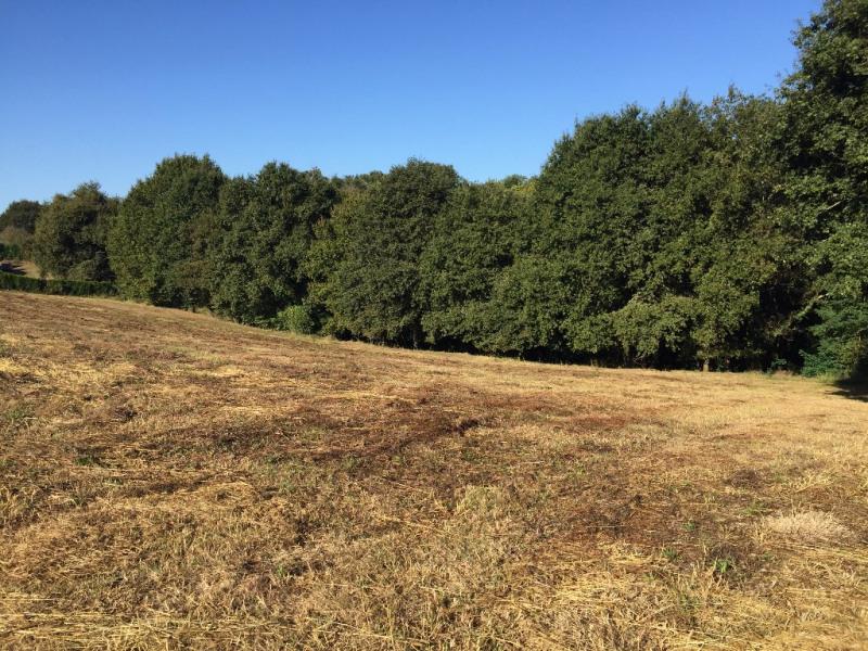 Vente terrain Pontonx sur l adour 88000€ - Photo 1
