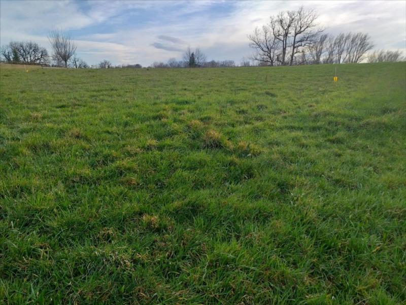 Vente terrain Realmont 41000€ - Photo 2
