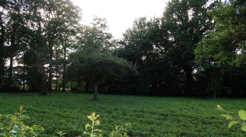 Vente terrain Saint maurice les brousse 32500€ - Photo 4