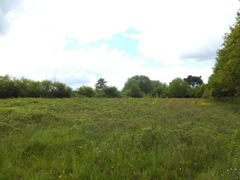 Vente terrain St medard de mussidan 49000€ - Photo 4