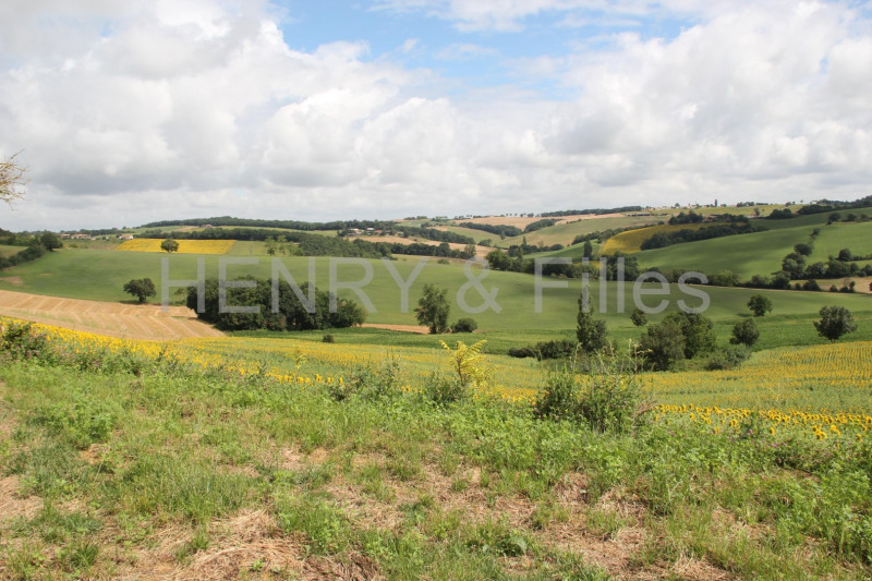 Vente terrain Rieumes 65 000€ - Photo 6