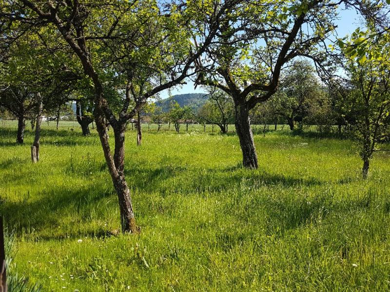 Vente terrain Aumontzey 28600€ - Photo 2