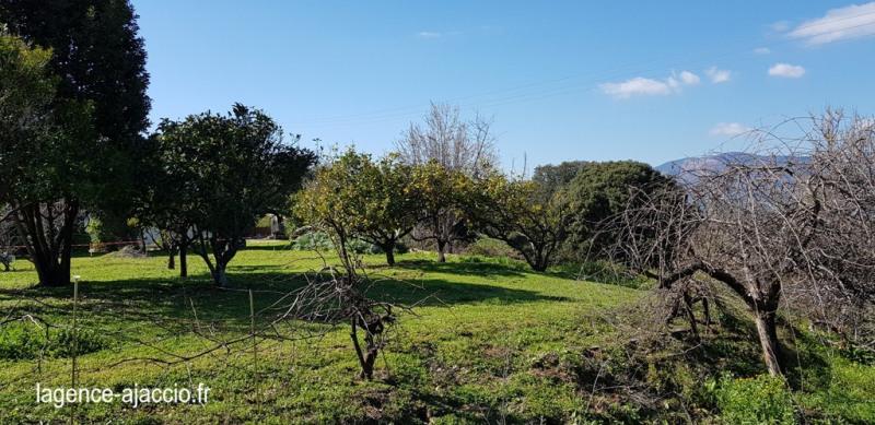 Vente terrain Bastelicaccia 160000€ - Photo 2