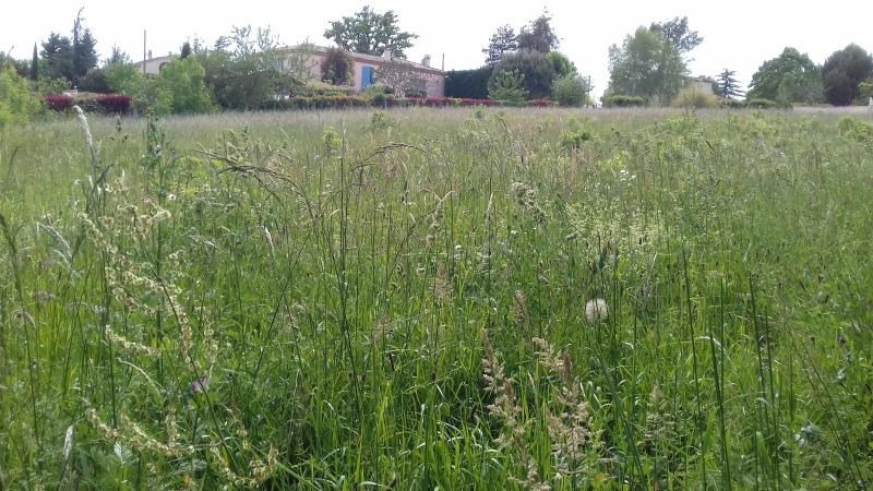 Vente terrain Labruguiere 58 500€ - Photo 3