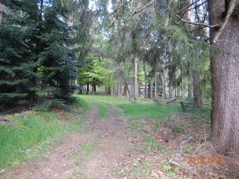 Vente terrain Le chambon sur lignon 32600€ - Photo 5