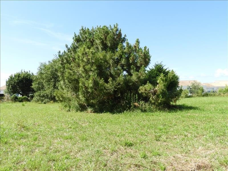 Vente terrain St georges d oleron 88 000€ - Photo 1