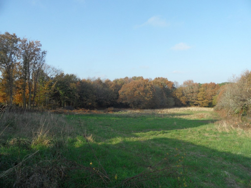 Verkauf grundstück Ploemel 160100€ - Fotografie 1