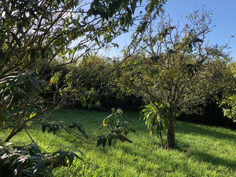 Vendita casa Locmaria 368450€ - Fotografia 2