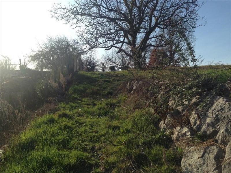 Verkoop  stukken grond Saint-romain-de-surieu 96000€ - Foto 4