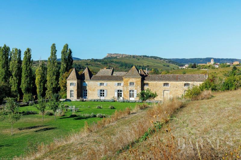 Vente de prestige château Mâcon 1770000€ - Photo 2