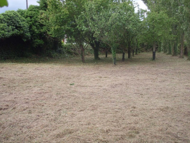 Sale site St germain sur ay 33 900€ - Picture 1