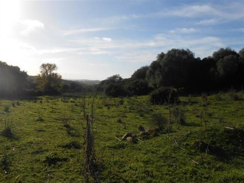 Vente terrain Sollacaro 575000€ - Photo 4