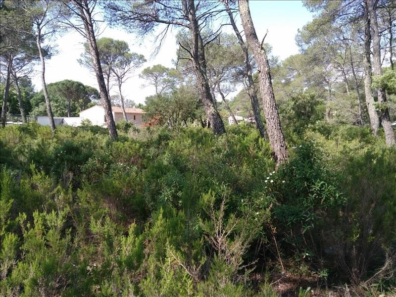 Sale house / villa Le cannet des maures 376 300€ - Picture 2