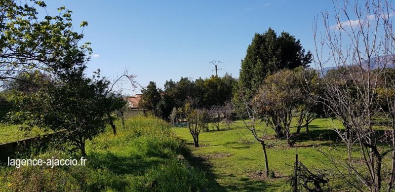 Vente terrain Bastelicaccia 160000€ - Photo 5