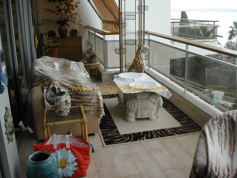 Viager appartement Golfe-juan 230 000€ - Photo 20