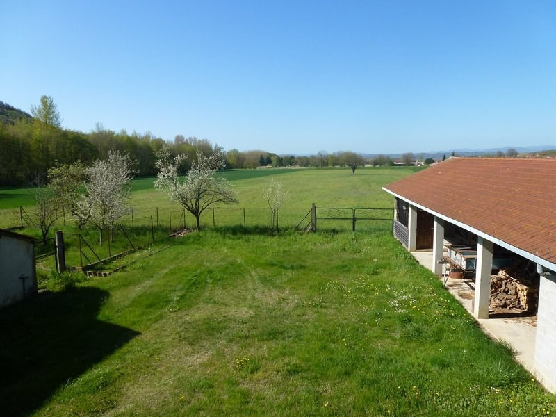 Sale house / villa Chateauneuf de galaure 245000€ - Picture 3