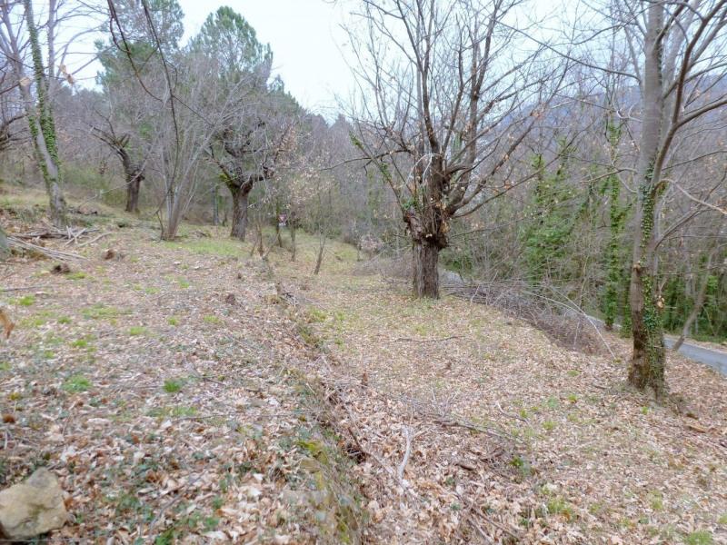 Vente terrain Aubenas 34000€ - Photo 2