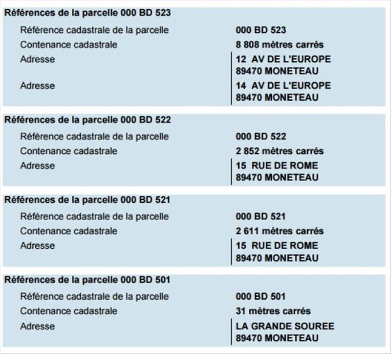 Sale site Moneteau 690000€ - Picture 3