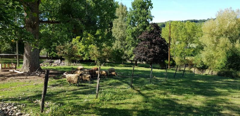 Sale house / villa Cour et buis 315000€ - Picture 5