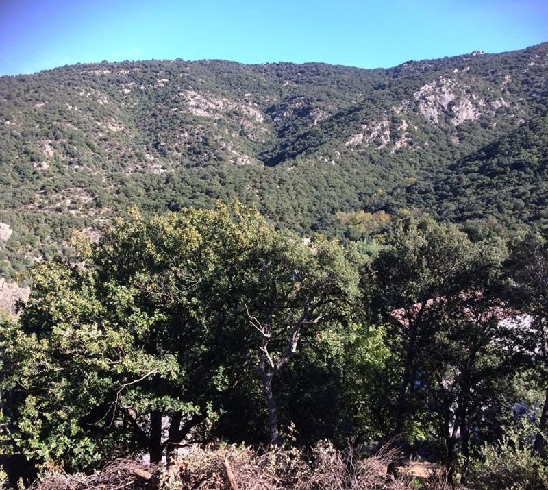 Vente terrain Sorede 135000€ - Photo 2