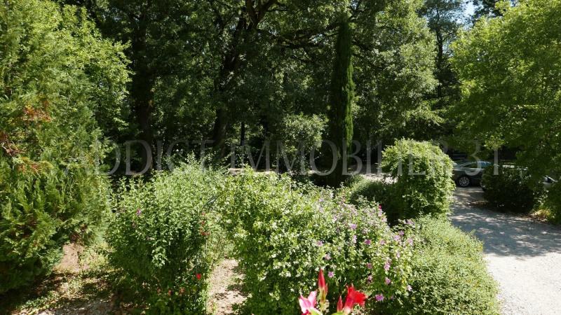 Vente maison / villa Lavaur 485000€ - Photo 19