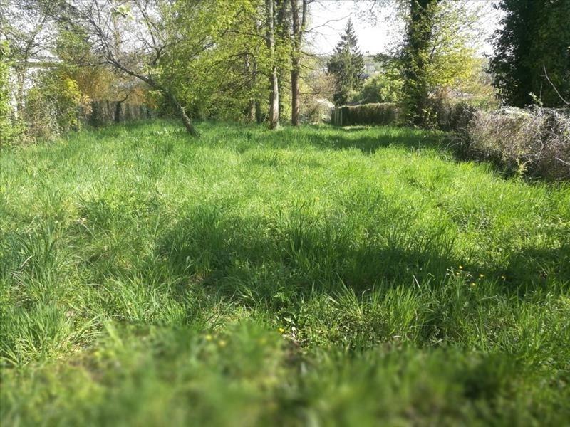 Vente terrain Samois sur seine 219000€ - Photo 3