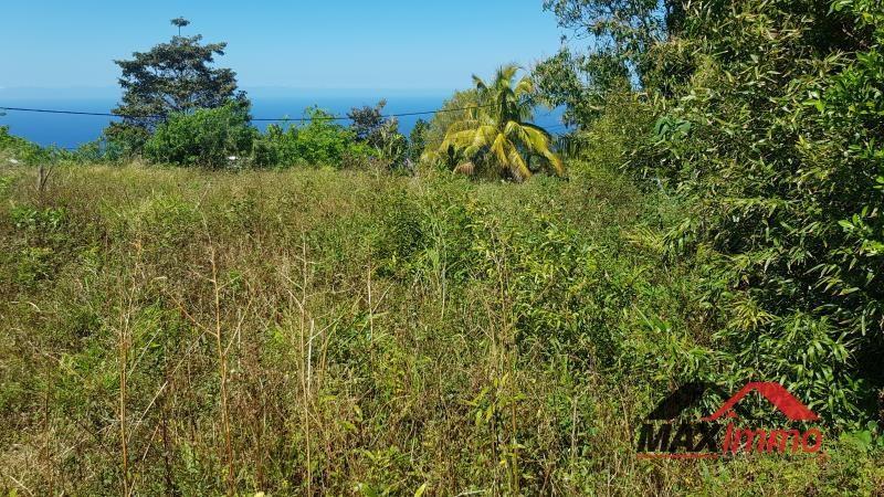 Terrain constructible petite île - 931 m²